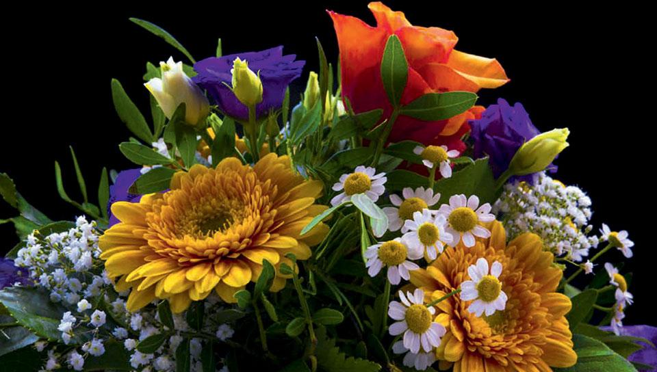 Für dich fang ich den Sommer ein, den Rosenduft, des Himmels Blau und all die bunten Farben.